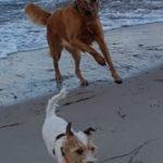Betty und Marble